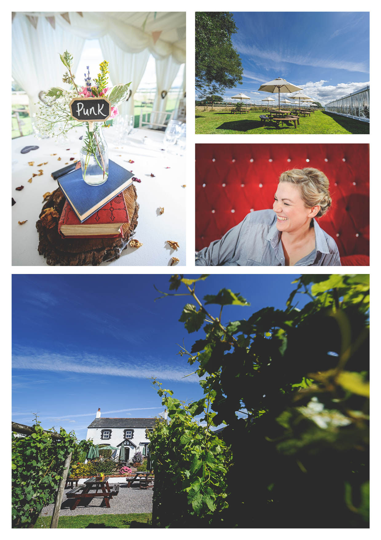 Photographs of llanerch vineyard during a wedding in the summertime