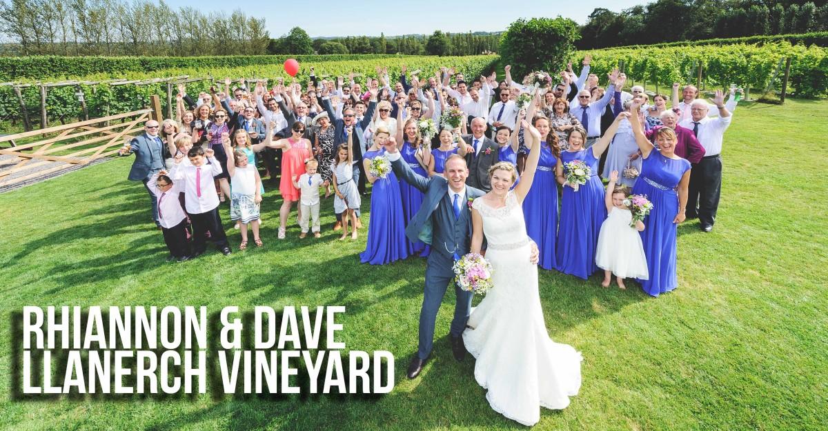 Group photo of all guests at wedding at llanerch vineyard