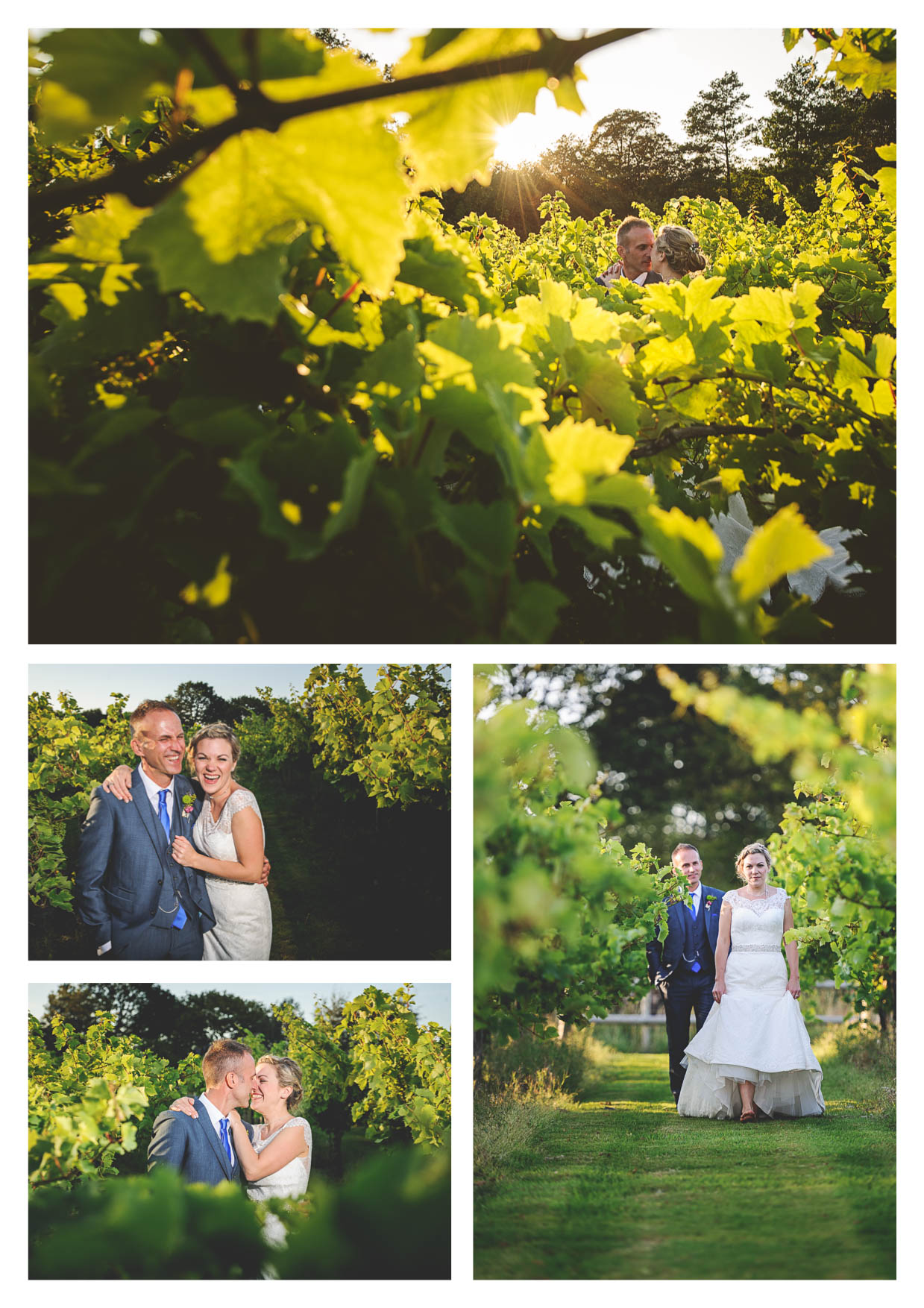 Photographs of a bride and groom on their wedding day amongst the vines at llanerch vineyard enjoying some couple time in beautiful evening sunset